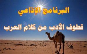 قطوف الادب من كلام العرب
